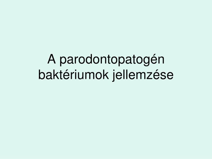 A parodontopatogén baktériumok jellemzése