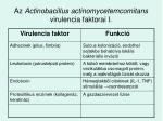 az actinobacillus actinomycetemcomitans virulencia faktorai i