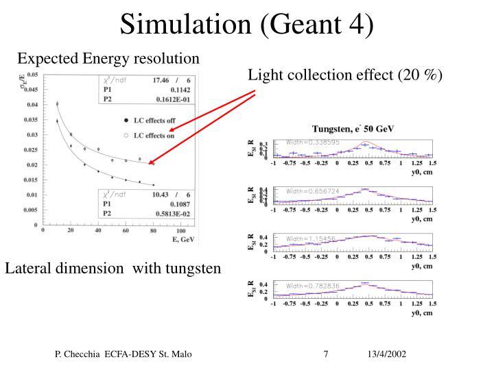 Simulation (Geant 4)