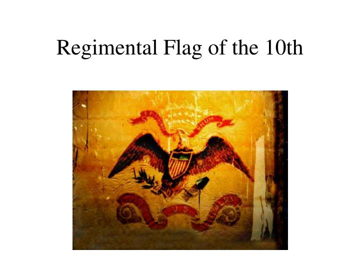 Regimental Flag of the 10th