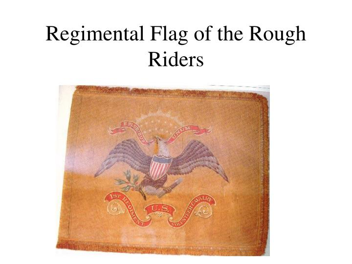 Regimental Flag of the Rough Riders