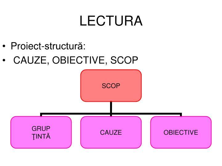 Proiect-structură: