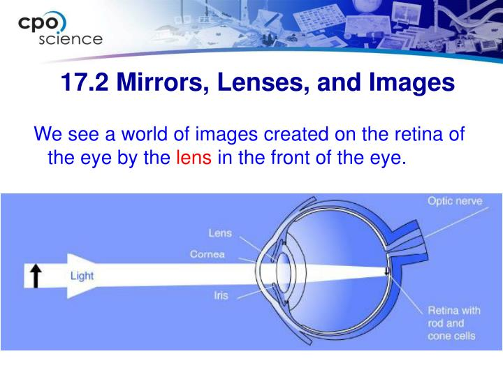We see a world of images created on the retina of the eye by the