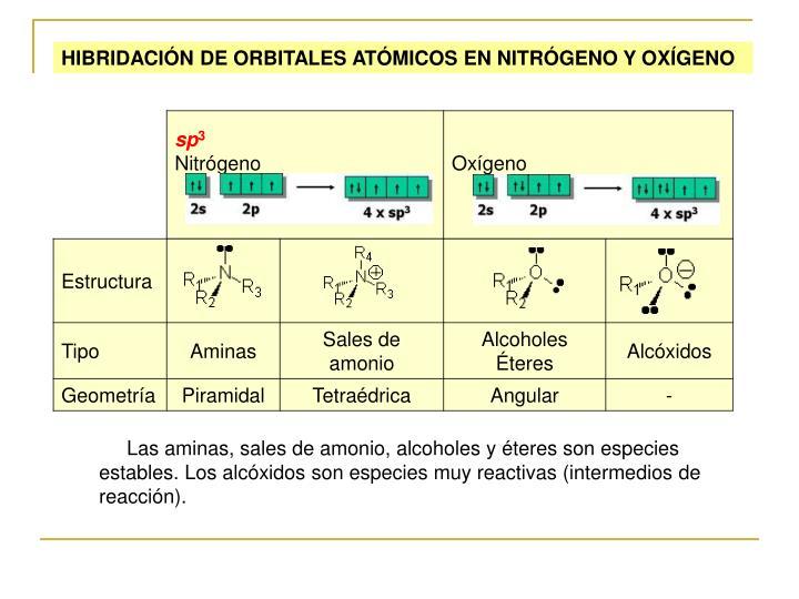 HIBRIDACIÓN DE ORBITALES ATÓMICOS EN NITRÓGENO Y OXÍGENO