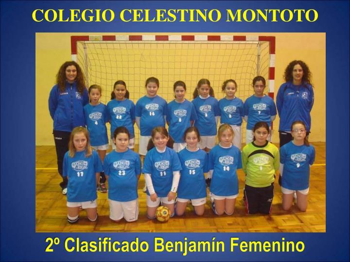 COLEGIO CELESTINO MONTOTO