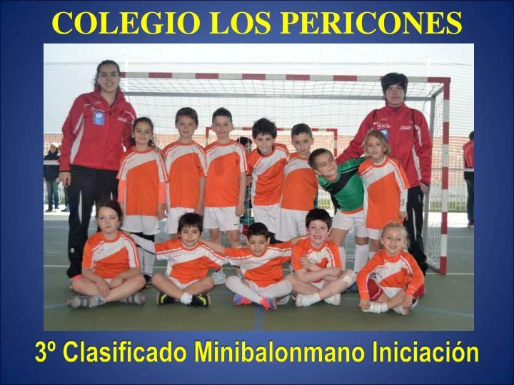 COLEGIO LOS PERICONES