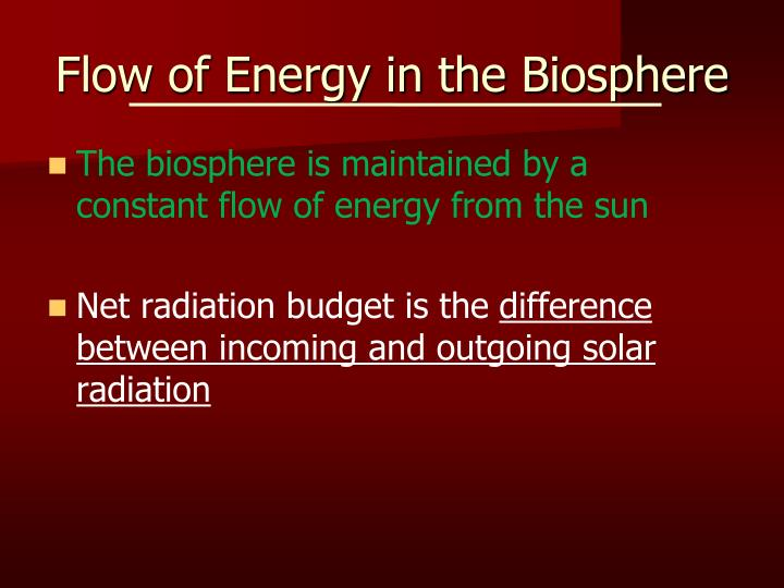 Flow of energy in the biosphere