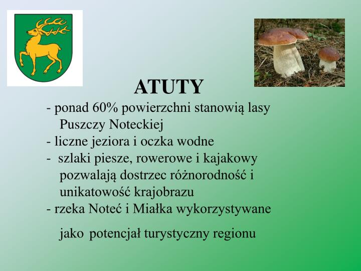ATUTY