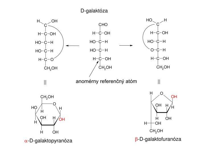 D-galaktóza