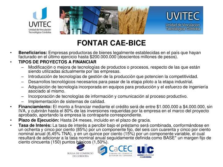 FONTAR CAE-BICE