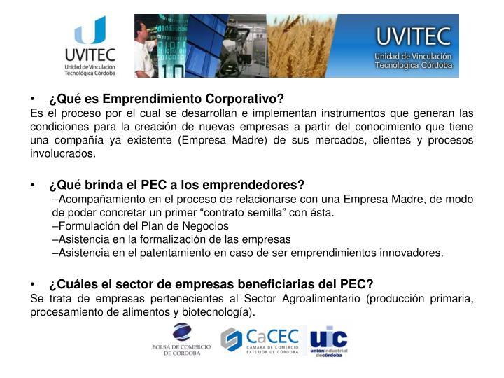 ¿Qué es Emprendimiento Corporativo?