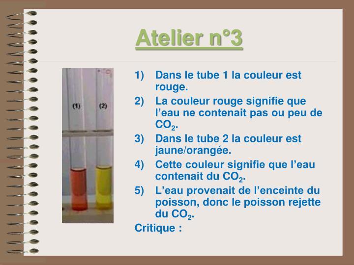 Atelier n°3