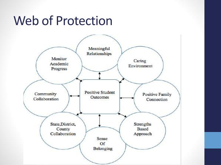 Web of Protection