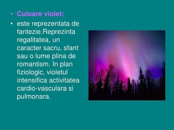 Culoare violet:
