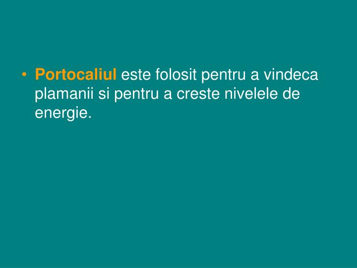 Portocaliul