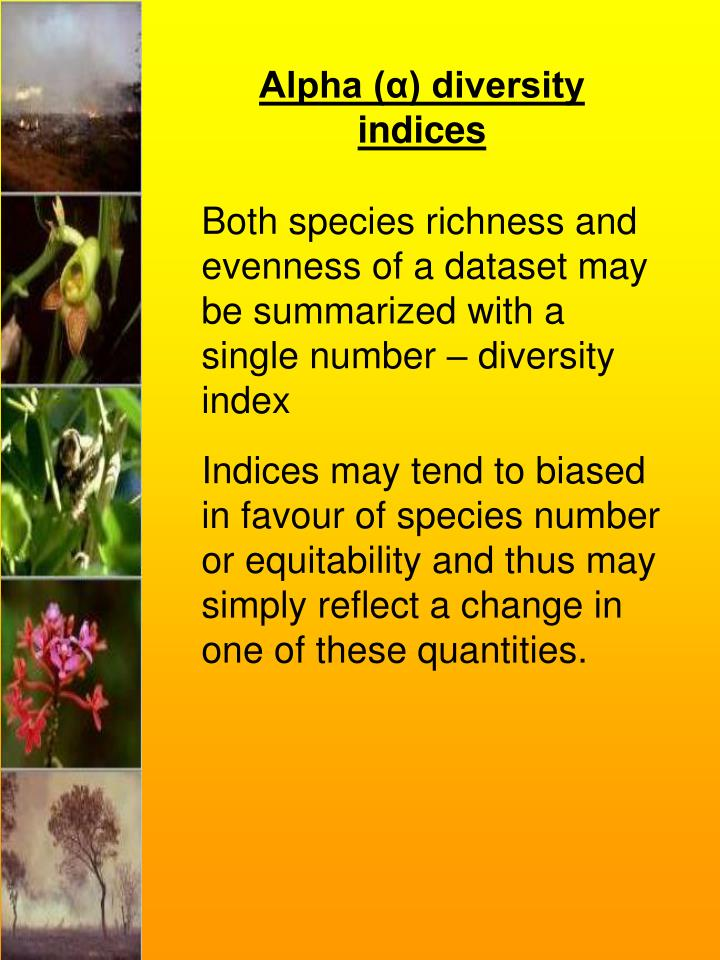Alpha (α) diversity indices