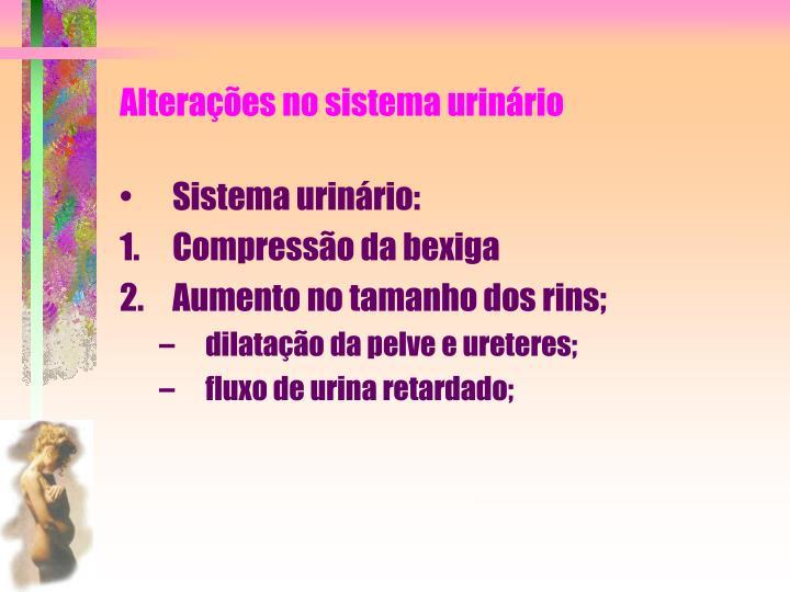 Alterações no sistema urinário