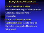bloques economicos2