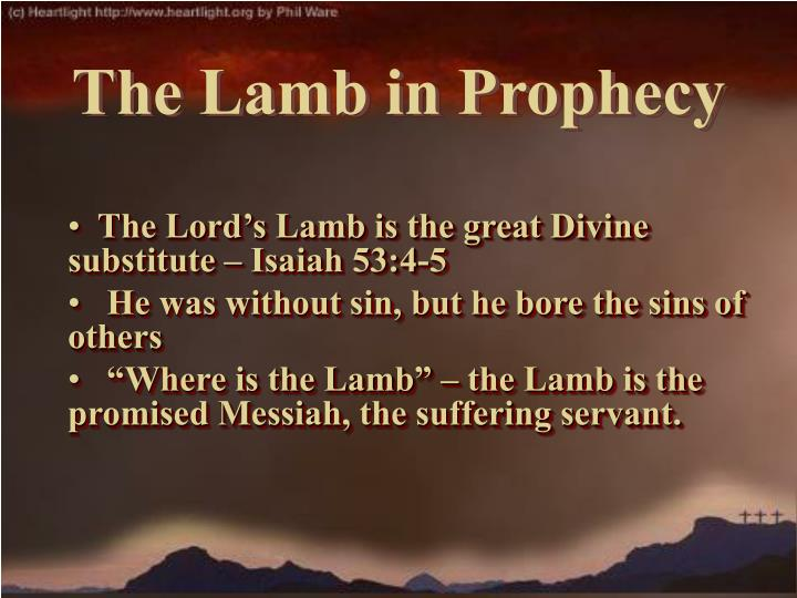 The Lord's Lamb is the great Divine substitute – Isaiah 53:4-5