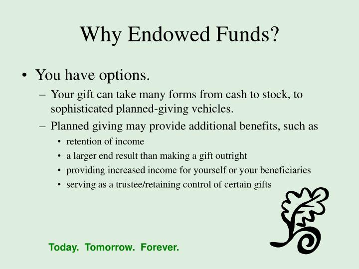 Why Endowed Funds?