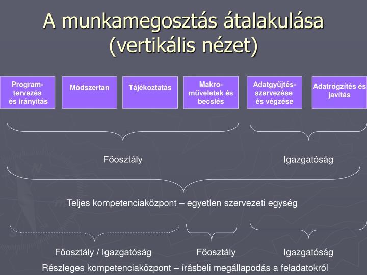 A munkamegosztás átalakulása (vertikális nézet)