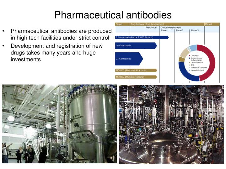 Pharmaceutical antibodies