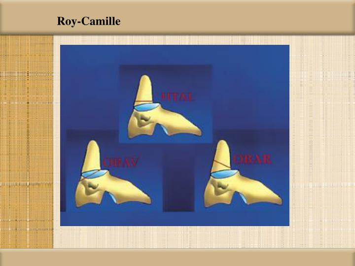 Roy-Camille