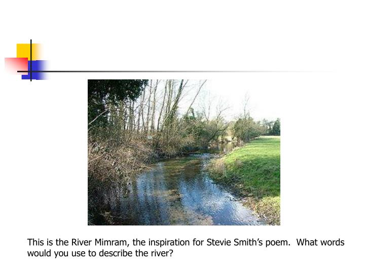 This is the River Mimram, the inspiration for Stevie Smith's poem.  What words