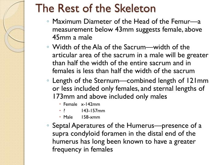 The Rest of the Skeleton