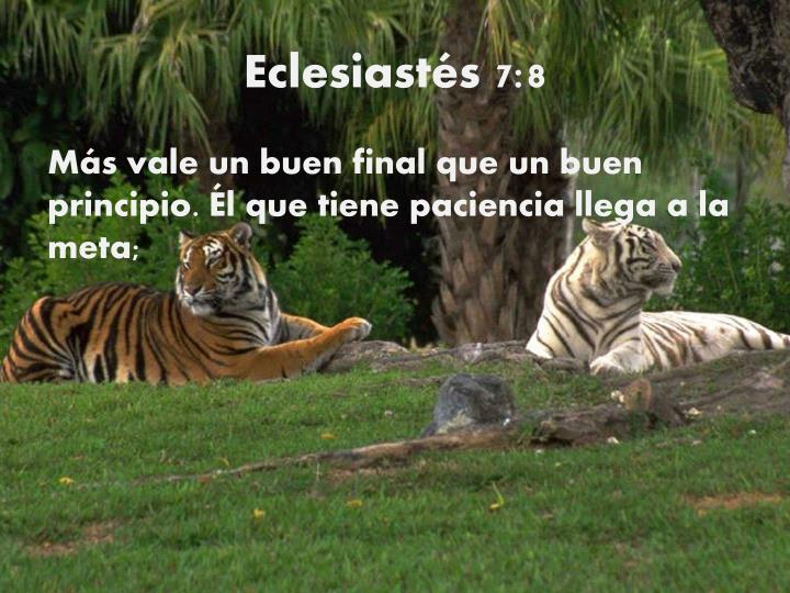 Eclesiastés 7:8