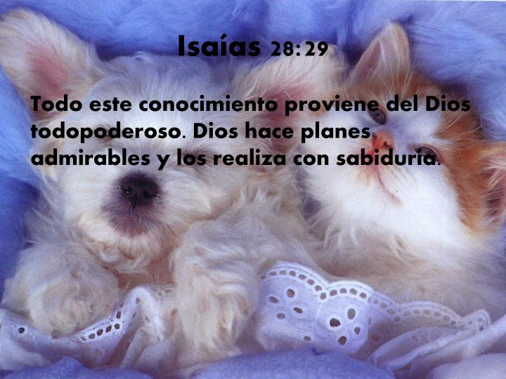 Isaías 28:29