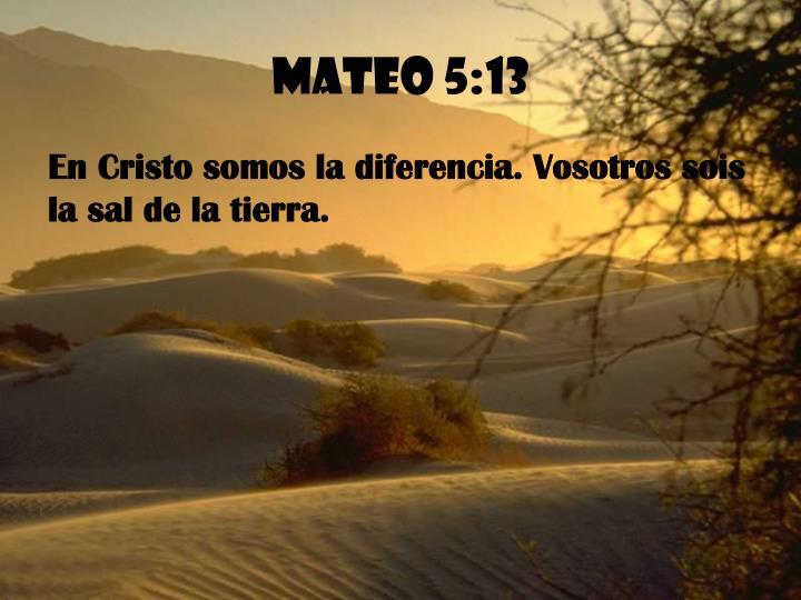 Mateo 5:13