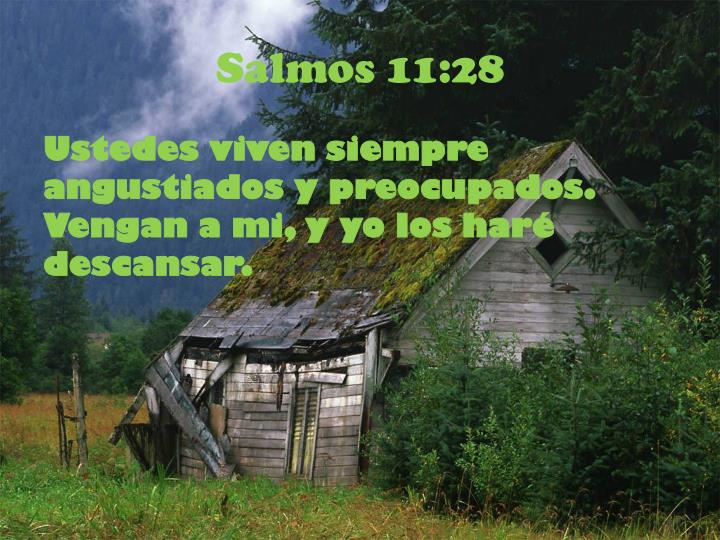 Salmos 11:28