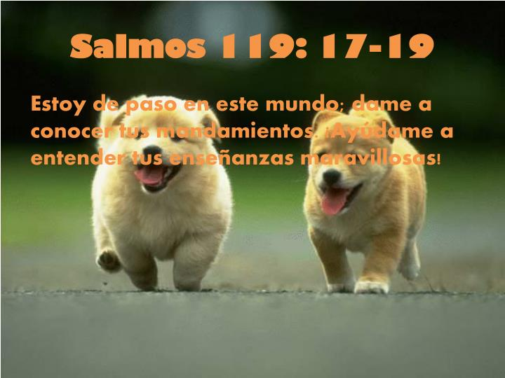 Salmos 119: 17-19
