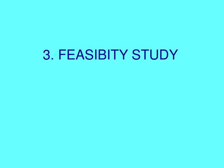 3. FEASIBITY STUDY