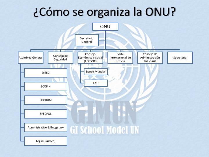 ¿Cómo se organiza la ONU?