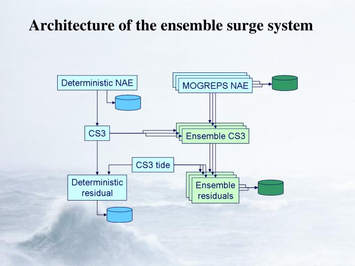 Architecture of the ensemble surge system