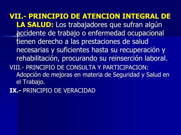 VII.- PRINCIPIO DE ATENCION INTEGRAL DE LA SALUD: