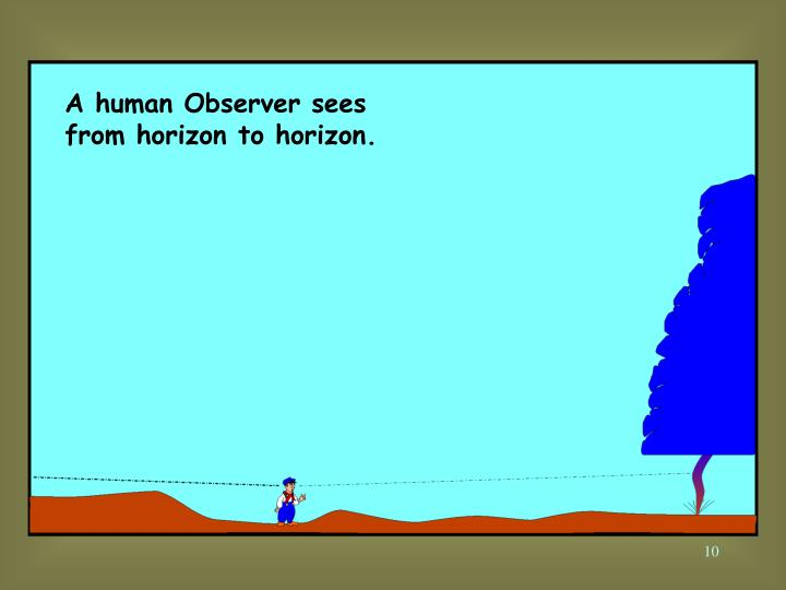 A human Observer sees