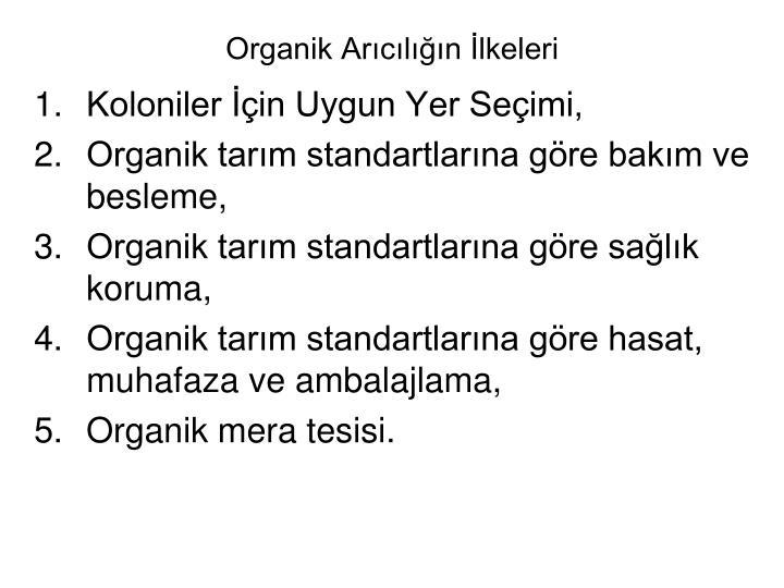 Organik Arcln lkeleri