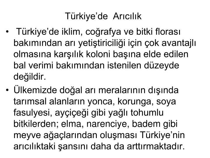 Trkiyede  Arclk