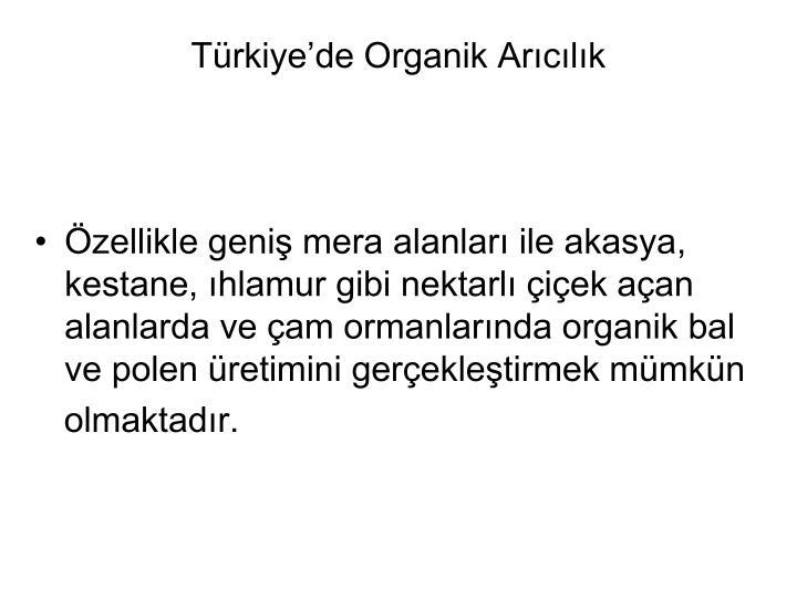 Trkiyede Organik Arclk