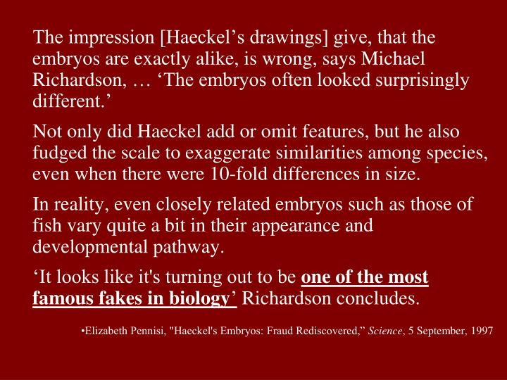 The impression [Haeckel's drawings] give, that the embryos are exactly alike, is wrong, says Michael Richardson,