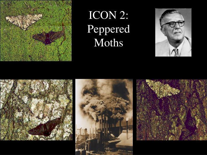ICON 2: