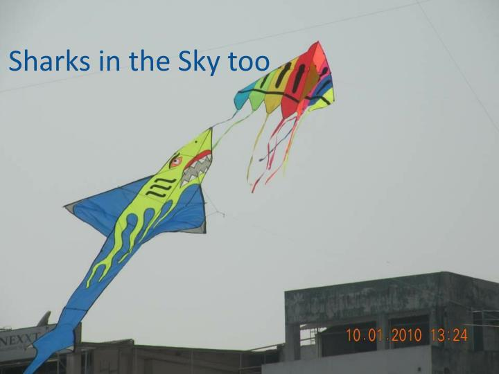 Sharks in the Sky too