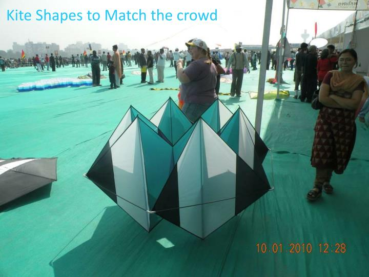 Kite Shapes to Match the crowd
