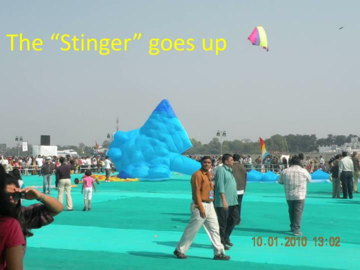 "The ""Stinger"" goes up"
