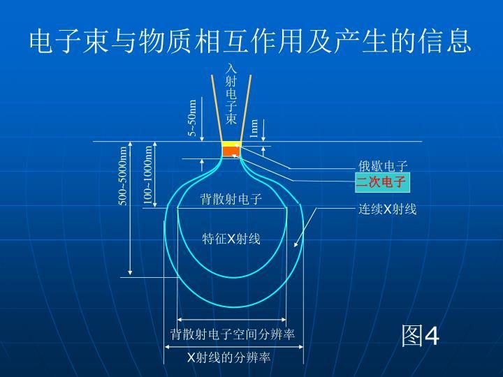 电子束与物质相互作用及产生的信息