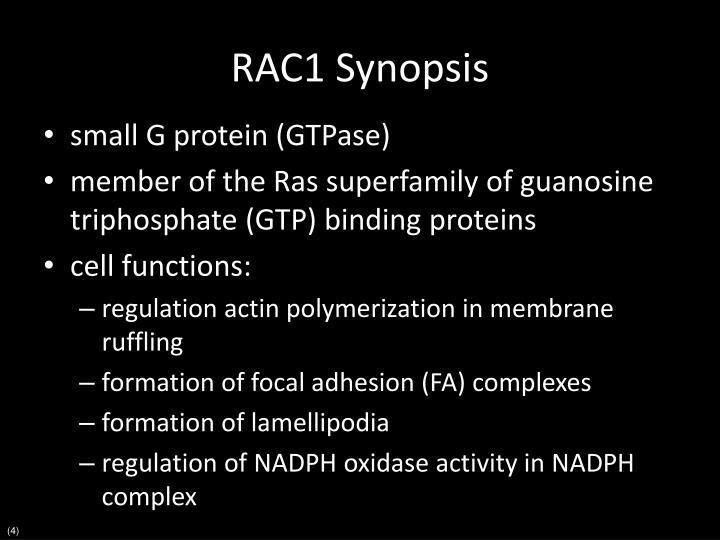 RAC1 Synopsis