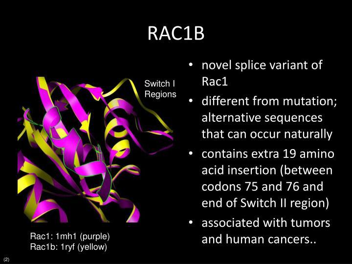 RAC1B